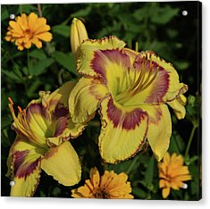 Acrylic Print featuring the photograph Daylilies And Zinnia by Sandy Keeton