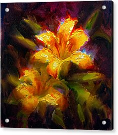 Daylily Sunshine - Colorful Tiger Lily/orange Day-lily Floral Still Life  Acrylic Print