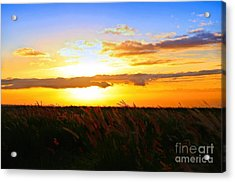 Acrylic Print featuring the photograph Day's End by DJ Florek