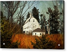 Acrylic Print featuring the photograph Days Gone By by Julie Hamilton