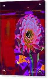 Dazzle Acrylic Print