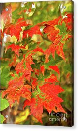 Acrylic Print featuring the painting Dazzling Autumn Leaves In The Blue Ridge Ap by Dan Carmichael