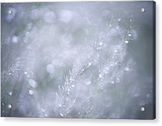 Acrylic Print featuring the photograph Dazzling Silver World by Jenny Rainbow