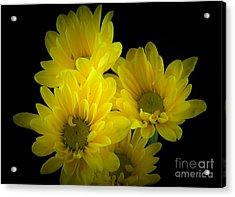Dazzling Yellow Acrylic Print