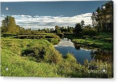 De Boville Slough At Pitt River Dike Acrylic Print