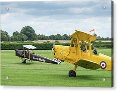 Acrylic Print featuring the photograph De Havilland Tiger Moths Taxiing by Gary Eason