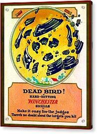 Dead Bird Acrylic Print