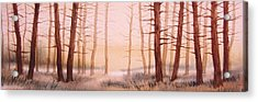 Dead Forest Acrylic Print by Kevin Heaney