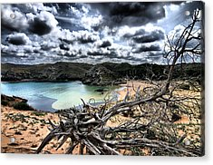 Dead Nature Under Stormy Light In Mediterranean Beach Acrylic Print