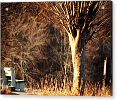 Dead Of Winter Acrylic Print