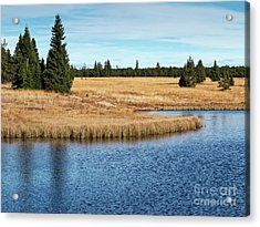 Dead Pond In Ore Mountains Acrylic Print by Michal Boubin