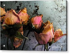 Dead Roses 2 Acrylic Print