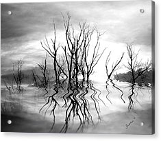 Acrylic Print featuring the photograph Dead Trees Bw by Susan Kinney