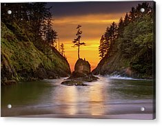Deadman's Cove At Cape Disappointment State Park Acrylic Print