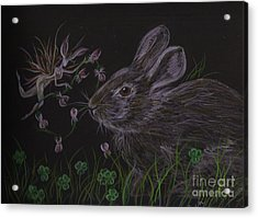 Acrylic Print featuring the drawing Dearest Bunny Eat The Clover And Let The Garden Be by Dawn Fairies