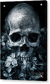 Acrylic Print featuring the photograph Death Comes To Us All by Edward Fielding