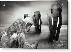 Acrylic Print featuring the photograph Death List by Christine Sponchia