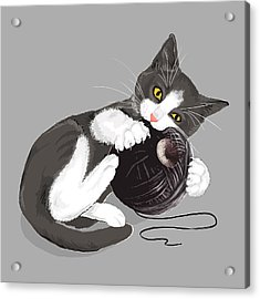 Death Star Kitty Acrylic Print by Olga Shvartsur