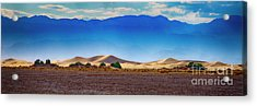 Death Valley Dunes Acrylic Print