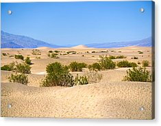 Death Valley Sanddunes Acrylic Print by Lutz Baar