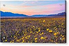 Death Valley Sunset Acrylic Print