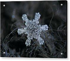 December 18 2015 - Snowflake 1 Acrylic Print