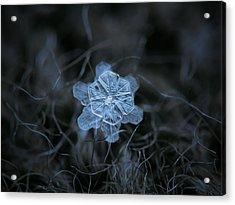 December 18 2015 - Snowflake 2 Acrylic Print