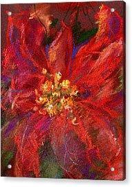 December Flower Acrylic Print