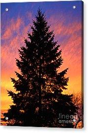 December Sunset Acrylic Print by Mark Miller