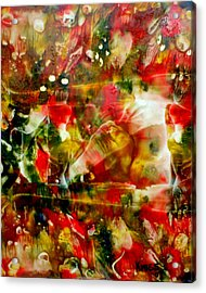 Deck The Halls Acrylic Print by Susan Kubes
