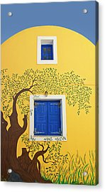 Decorated House Acrylic Print by Meirion Matthias