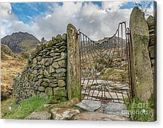 Acrylic Print featuring the photograph Decorative Gate Snowdonia by Adrian Evans