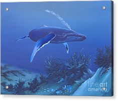 Deep Blue Acrylic Print by Michael Allen