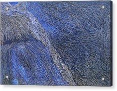 Deep Blue  Acrylic Print by Prakash Bal Joshi