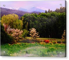 Acrylic Print featuring the photograph Deep Breath Of Spring El Valle New Mexico by Anastasia Savage Ealy