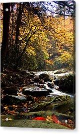 Acrylic Print featuring the photograph Deep Creek Mountain Stream by Bob Decker