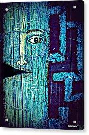 Deep Cut Acrylic Print by Paulo Zerbato