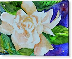 Acrylic Print featuring the painting Deep Gardenia by Beverley Harper Tinsley