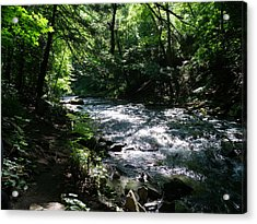 Deep In The Gorge Acrylic Print