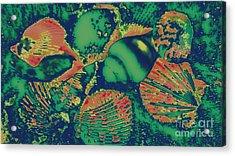Deep Sea Journey Acrylic Print by Rachel Hannah
