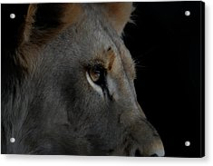 Acrylic Print featuring the digital art Deep Thought by Ernie Echols
