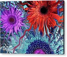 Deep Water Daisy Dance Acrylic Print by Christopher Beikmann