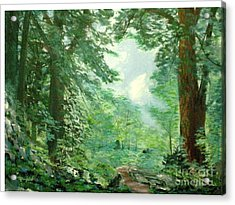 Deep Woods Path Acrylic Print by Hal Newhouser
