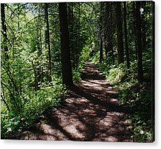 Acrylic Print featuring the photograph Deep Woods Road by Ben Upham III