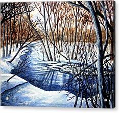 Deep Woods Wisconsin Acrylic Print by Thomas Kuchenbecker