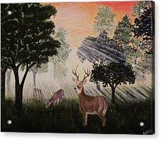 Deer At Dawn Acrylic Print by G H Hisayasu