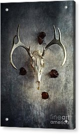 Acrylic Print featuring the photograph Deer Buck Skull With Fallen Leaves by Stephanie Frey