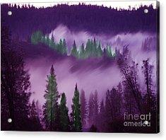 Deer Creek Canyon Acrylic Print