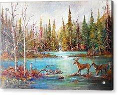 Deer Falls Acrylic Print