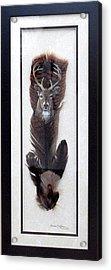Deer Head Acrylic Print